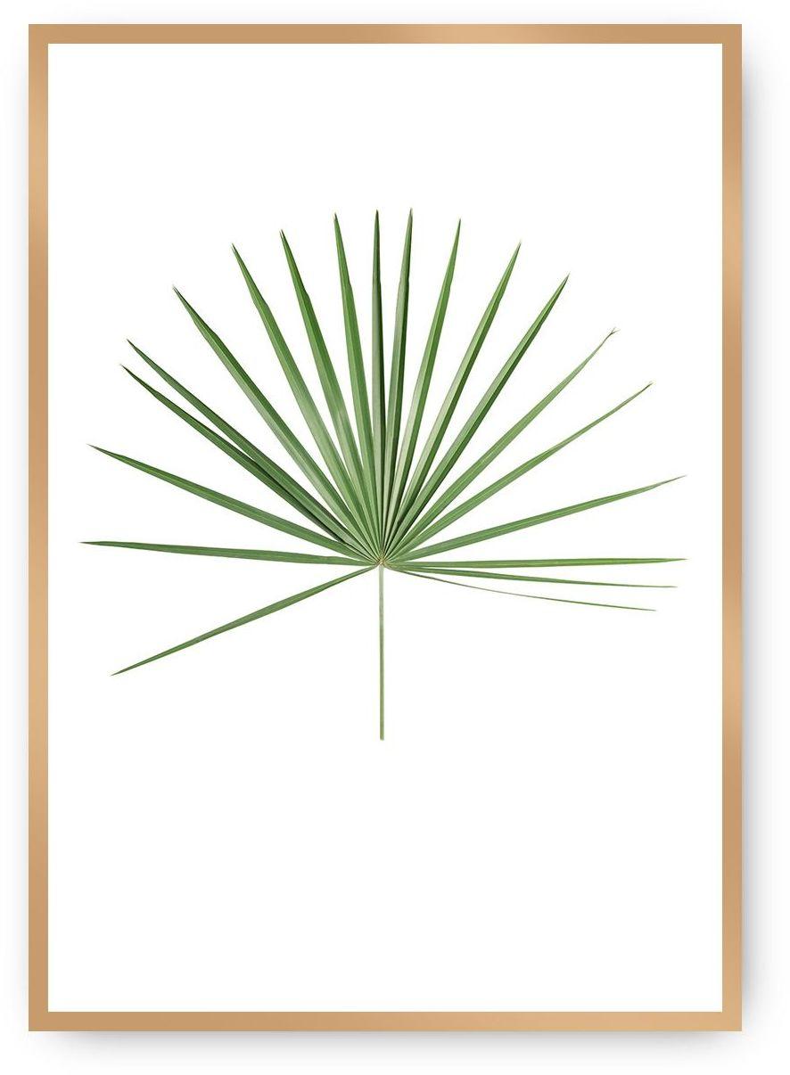 Plakat Tropical Leaf Green, 40 x 50 cm, Ramka: Złota