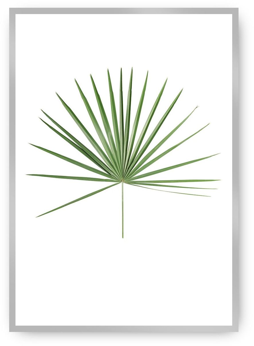 Plakat Tropical Leaf Green, 40 x 50 cm, Ramka: Srebrna