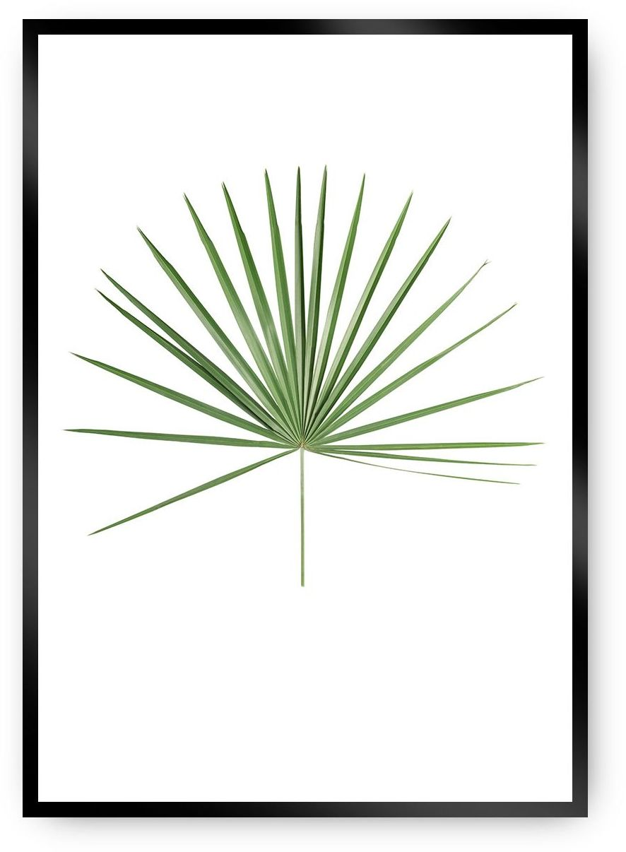 Plakat Tropical Leaf Green, 40 x 50 cm, Ramka: Czarna