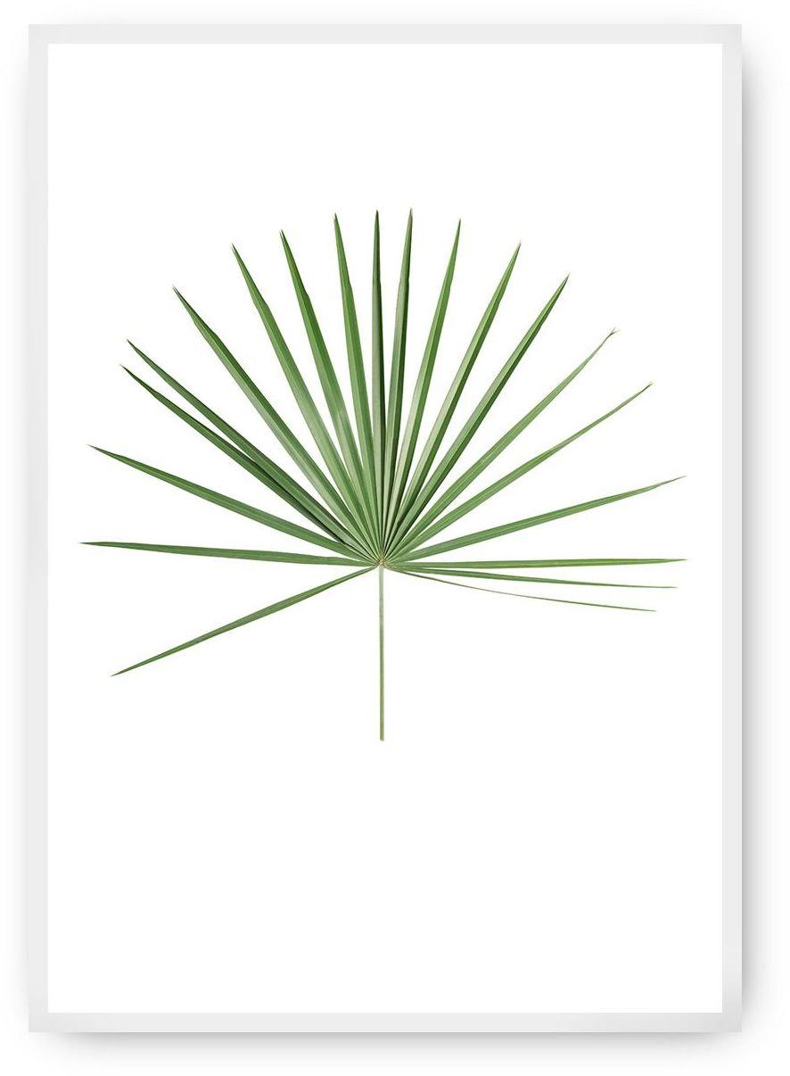 Plakat Tropical Leaf Green, 40 x 50 cm, Ramka: Biała