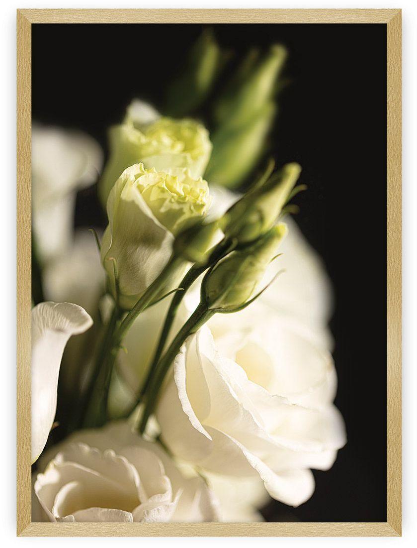 Plakat Dark Flowers I