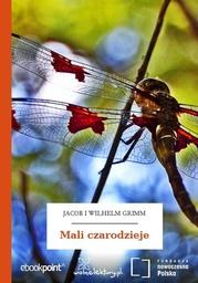 Mali czarodzieje - Audiobook.