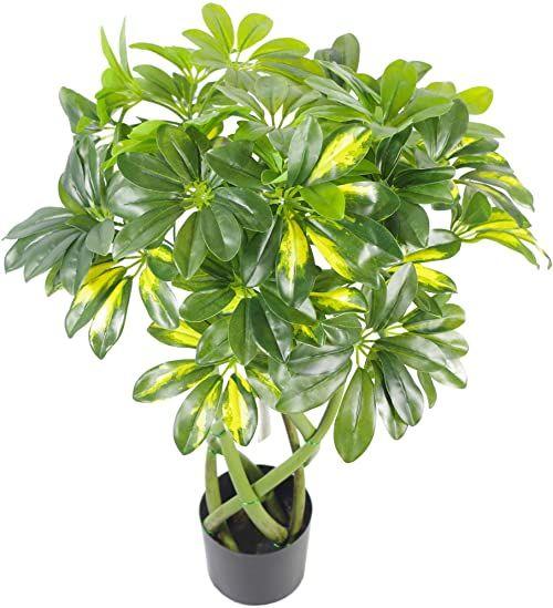 Leaf 70 cm skręcona łodyga Capella Arboricola sztuczny krzew roślinny, złoty bonsai LEAF-7002N