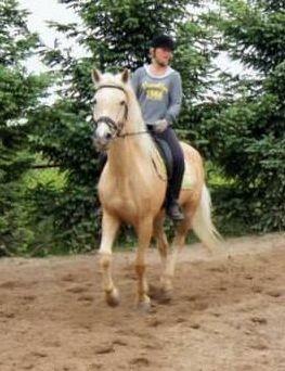 Nauka jazdy konnej  Płock