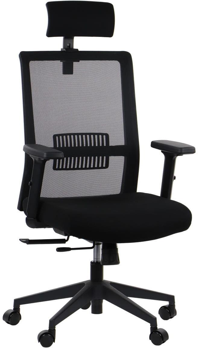 Fotel biurowy obrotowy RIVERTON - zagłówek, oparcie siatkowe, różne kolory