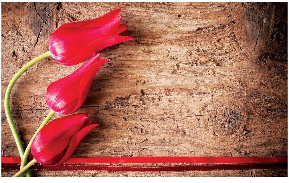 Fototapeta Czerwone Tulipany 254 x 184 cm