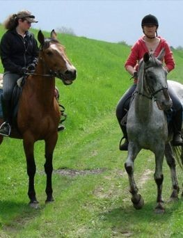 Nauka jazdy konnej dla dwóch osób  Płock