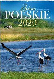 Kalendarz 2020 RW01 Pejzaże Polskie ZAKŁADKA DO KSIĄŻEK GRATIS DO KAŻDEGO ZAMÓWIENIA