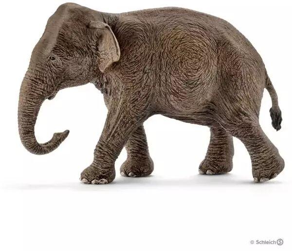 Azjatycka słonica - SCHLEICH