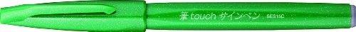 Pisak z elastyczną końcówką PENTEL Sign Brush Pen SES15 zielony