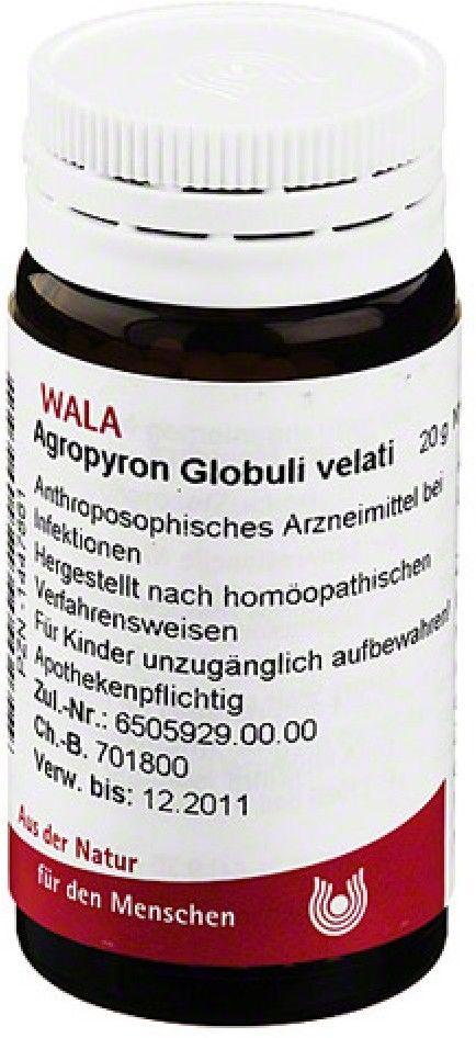 Wala Agropyron Velati globulki