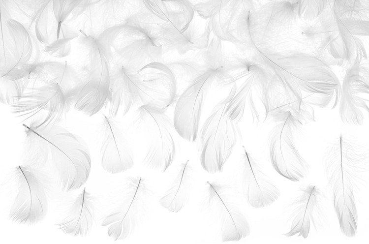 Białe piórka dekoracyjne 3g PD1-008