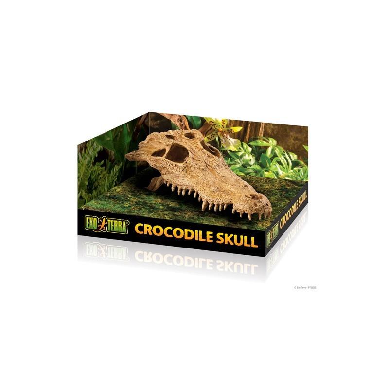 Exo-Terra Czaszka Krokodyla Crocodile Skull
