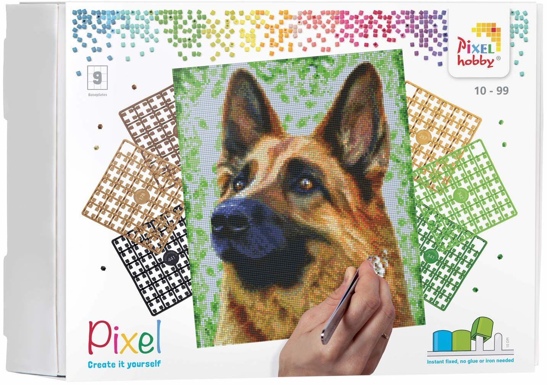 Pixel P090049 Mozaika opakowanie na prezent pies Obraz pikseli około 30,5 x 38,1 cm rozmiar do tworzenia dla dzieci i dorosłych, kolorowy