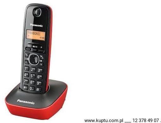 Panasonic KX-TG1611PDR