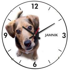 Zegar ścienny soczewka pies jamnik