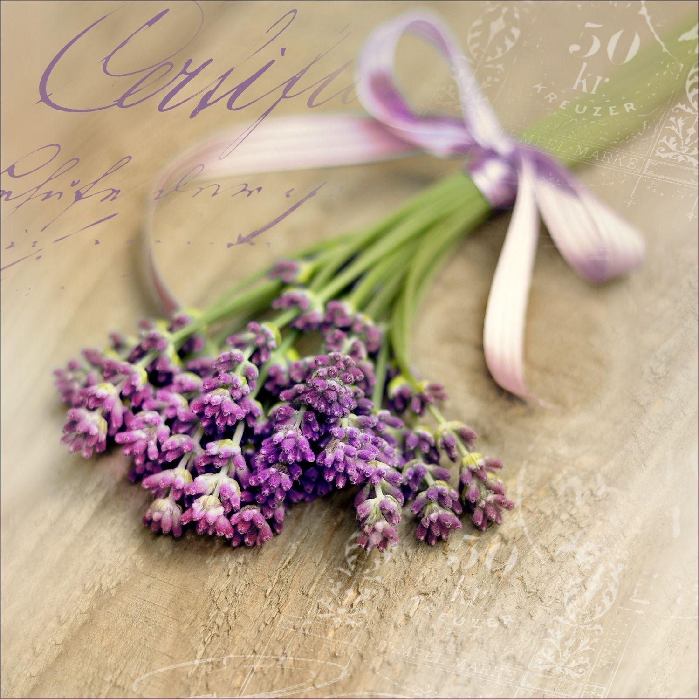 """Pro-Art gla729b obraz ścienny szkło sztuka """"Lovely lavender II"""", 50 x 50 cm"""