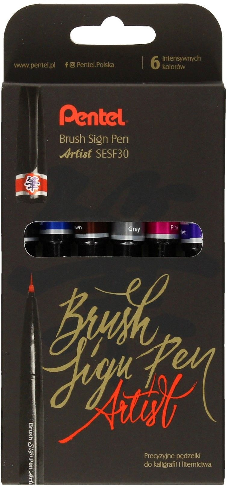 Pisaki pędzelkowe do kaligrafii i liternictwa BRUSH SIGN PEN ARTIST PENTEL 6szt. /SESF30C-ST6ACENPVPL/
