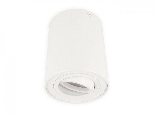 Oprawa sufitowa natynkowa punktowa okrągła ruchoma ROLLO - biały mat