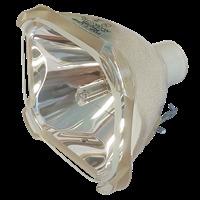 Lampa do PHILIPS P4750 - zamiennik oryginalnej lampy bez modułu
