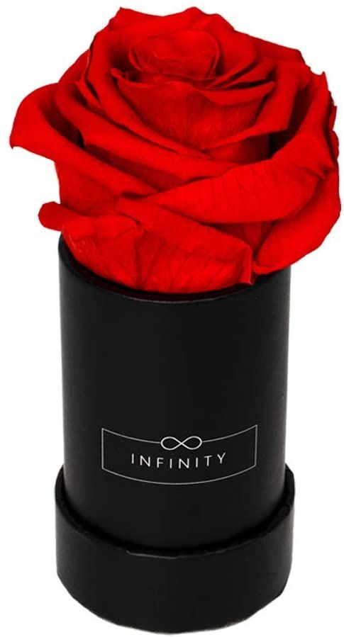 Infinity Flowerbox Pudełko na kwiaty, Vibrant Red, Extra Small