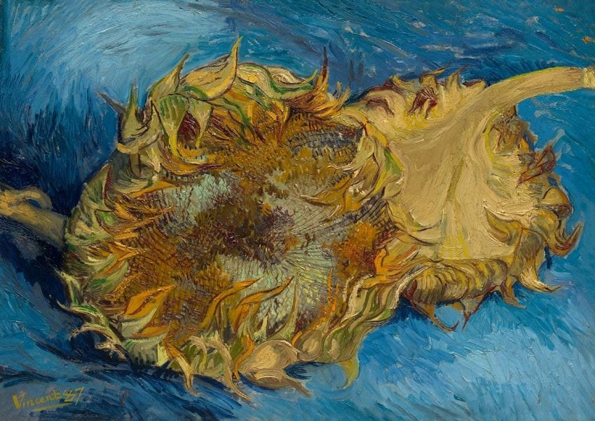Sunflowers, vincent van gogh - plakat wymiar do wyboru: 59,4x42 cm
