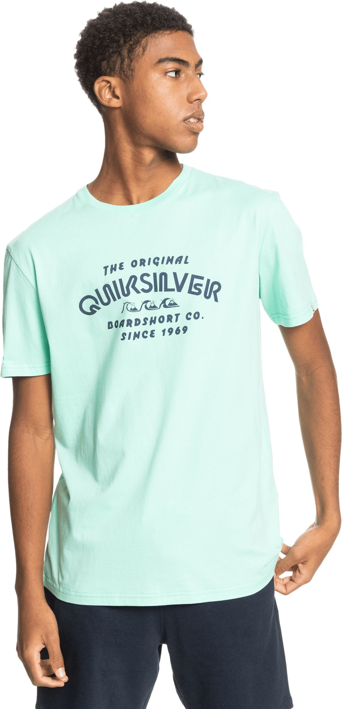 t-shirt męski QUIKSILVER WIDER MILE TEE Cabbage - GEA0