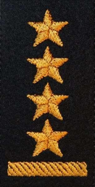 Dystynkcja na beret PSP - starszy kapitan (MIL2832) SR