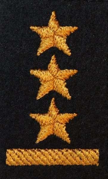 Dystynkcja na beret PSP - kapitan (MIL2833) SR