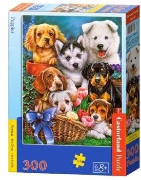 Puzzle Castor 300 - Szczeniaki, Puppies