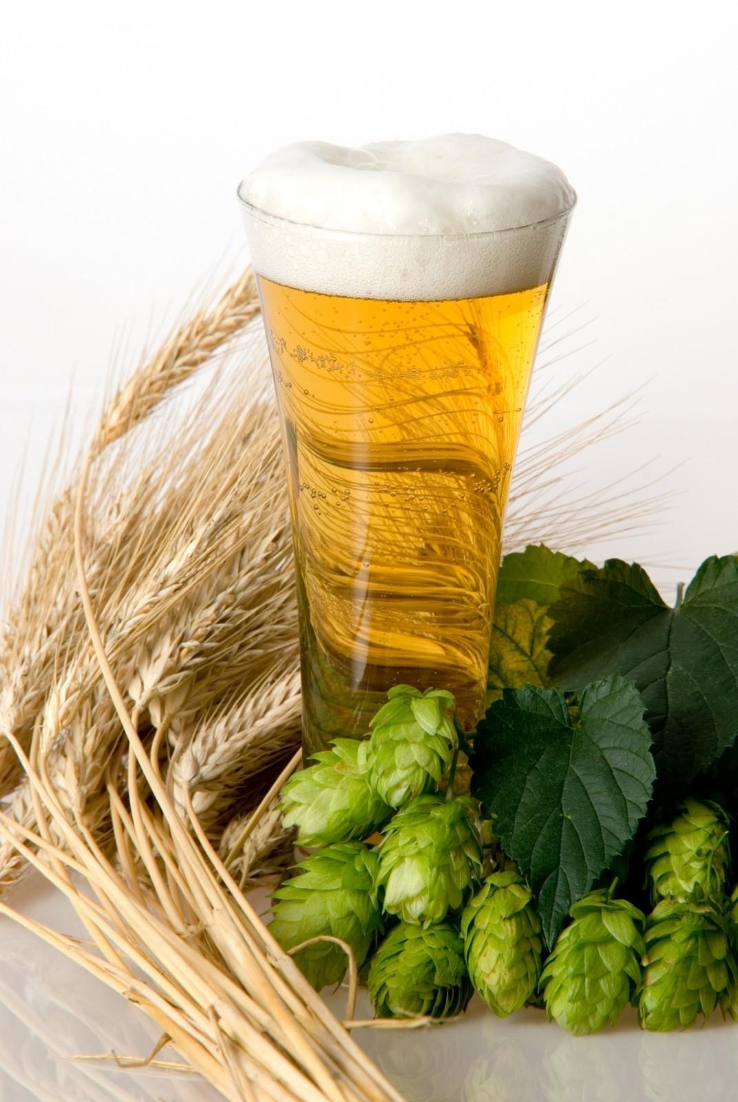 Kurs degustacji piwa  Warszawa