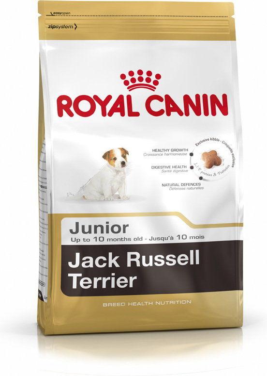 ROYAL CANIN Jack Russell Terrier Puppy 500g karma sucha dla szczeniąt do 10 miesiąca, rasy jack russel terrier