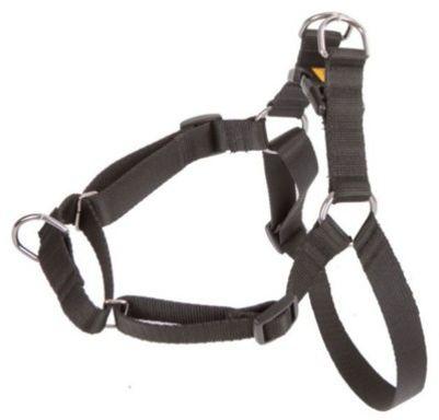 DINGO Szelki Easy Walk - dla psów ciągnących na smyczy - czarne