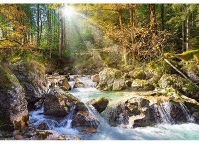 Puzzle Castorland 2000 - Leśny strumień, The forest stream