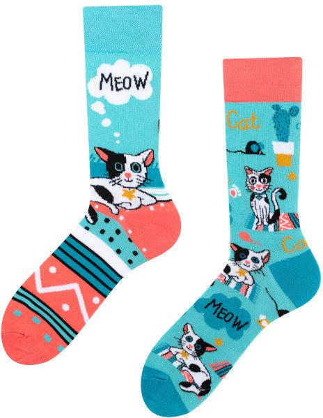 Cats, Todo Socks, Kotki, Kaktus, Kolorowe Skarpetki