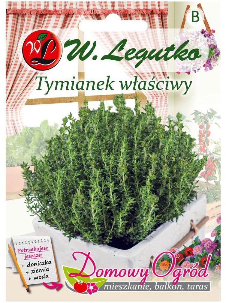 Tymianek właściwy SŁONECZKO nasiona tradycyjne 0.3 g W. LEGUTKO