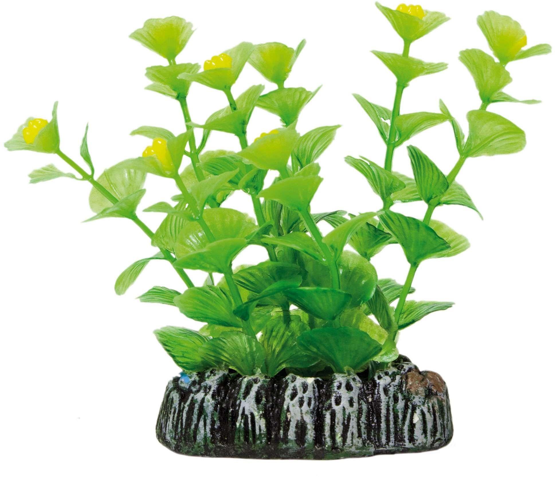 ICA AP1013 kardamina dla roślin wodnych, tworzywo sztuczne