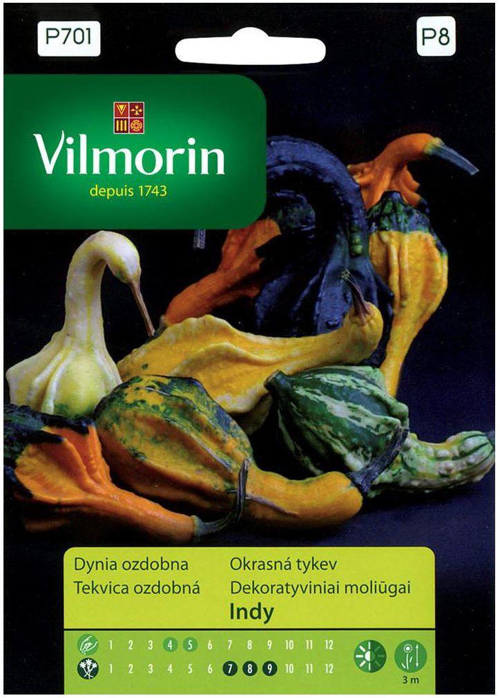 Dynia ozdobna INDY MIX nasiona tradycyjne 1 g VILMORIN