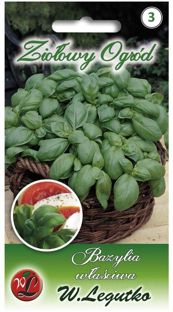 Bazylia właściwa ZIELONA nasiona tradycyjne 0.5 g W. LEGUTKO