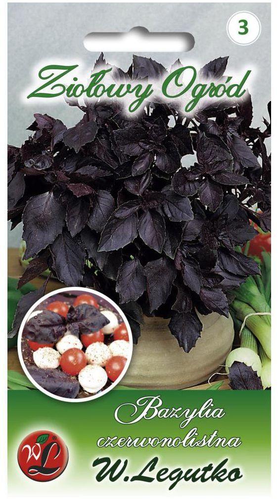 Bazylia czerwonolistna nasiona tradycyjne 0.5 g W. LEGUTKO