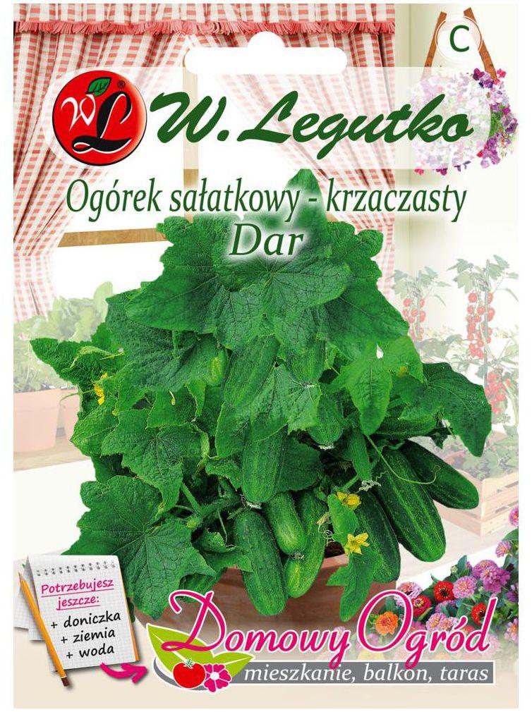 Ogórek sałatkowy krzaczasty DAR nasiona tradycyjne 5 g W. LEGUTKO