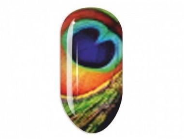 Nail Art Stikers Mollon Pro N156 naklejki do zdobienia