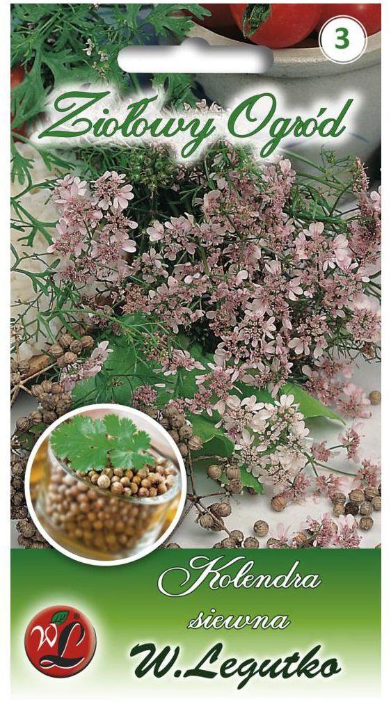 Kolendra siewna nasiona tradycyjne 3 g W. LEGUTKO