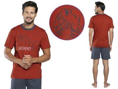 Piżama męska LION: rudy/grafit
