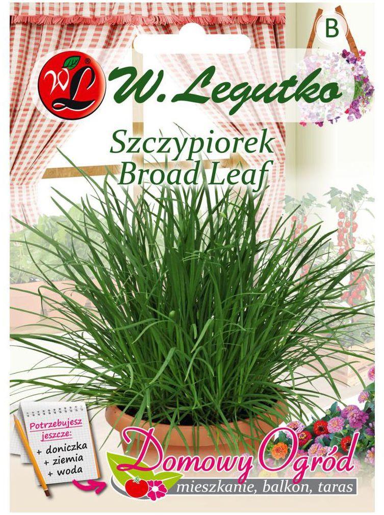 Szczypiorek BROAD LEAF nasiona tradycyjne 2 g W. LEGUTKO