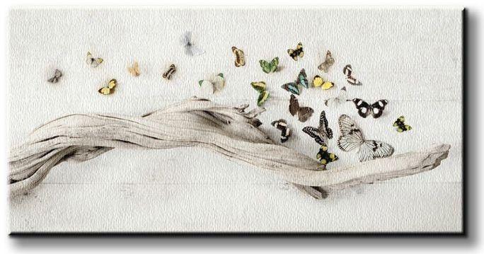 Obraz do sypialni - Motyle - Drift of Butterflies - 30x60 cm