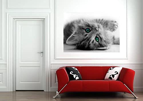 AG Design FTM 0805 tapeta papierowa w kształcie kotka, 160 x 115 cm, 1 część, papier, wielokolorowy, 0,1 x 160 x 115 cm