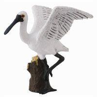 Ptak Warzęcha mała stojąca