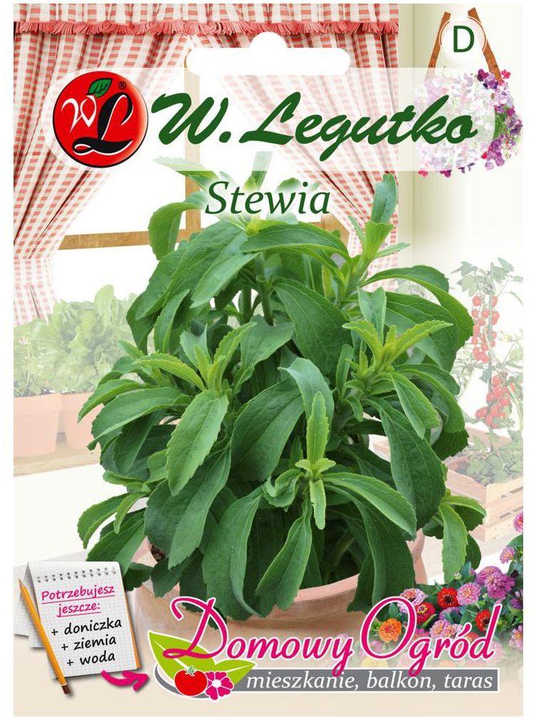 Stewia nasiona tradycyjne 0.008 g W. LEGUTKO