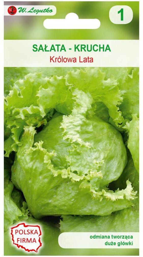 Sałata głowiasta krucha KRÓLOWA LATA nasiona tradycyjne 0.5 g W. LEGUTKO